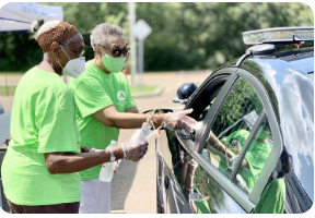 Vista Volunteer Program
