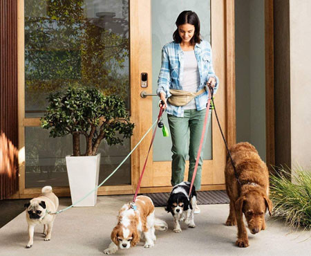 Give the dog walker her own lock code