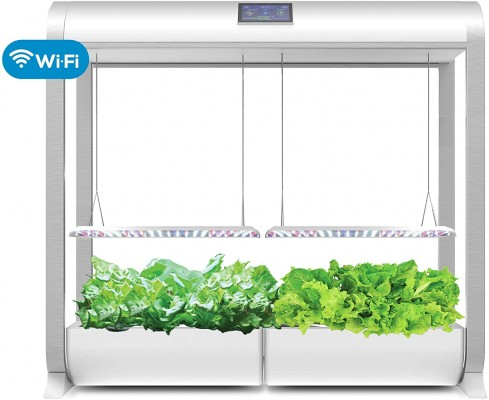 The AeroGarden Farm Plus is an excellent choice for heavy-duty lettuce users