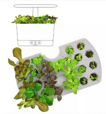 Germinate seeds using the Harvest Elite germination kit.